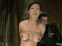 Oriental sweetheart Tia Ling acquires her lucious pointer sisters and steamy cunt teased while tied-up