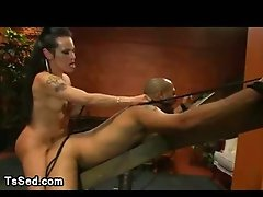 Huge breasts transsexual fuck fellow up the ass fastened up to a wooden restraints