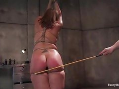 Fastened up sex slave receives her booty plugged and booty whipped until it's raw
