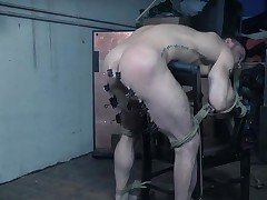 Bound guy tortured by his sexy bit of skirt